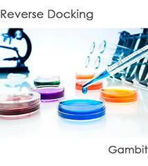 Reverse-Docking